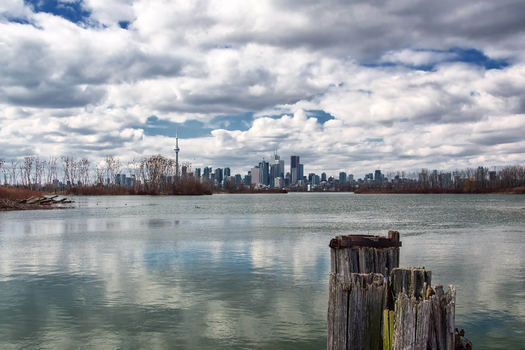 Toronto from Tommy Thompson Park